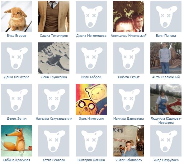 собачки в сообществе вконтакте