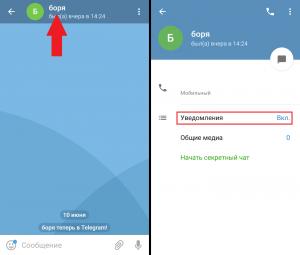 Отключить уведомления от пользователя в Телеграмм